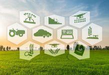 digital agricultural Destin Africa